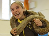Events_Elstead_Brownies_Snakes